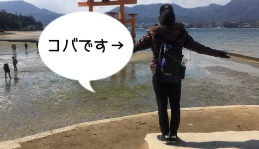 【人生夏休み計画】筆者コバのプロフィールを大公開!